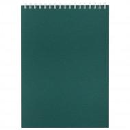 Блокнот Nettuno в линейку, зеленый